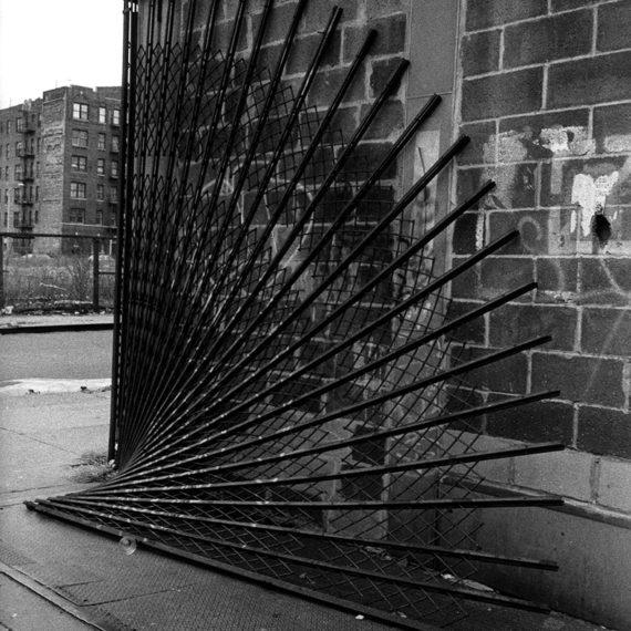 JulesAllenPhoto Rhythmology